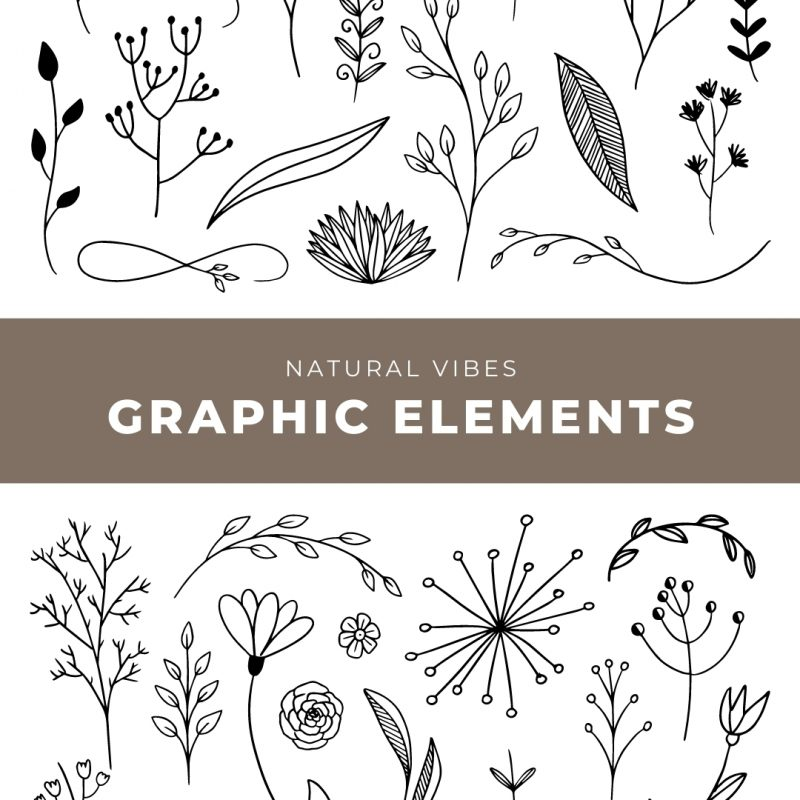 Natural Vibes Graphic Elements